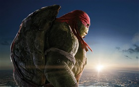 Teenage Mutant Ninja Turtles, Raph HD fondos de pantalla
