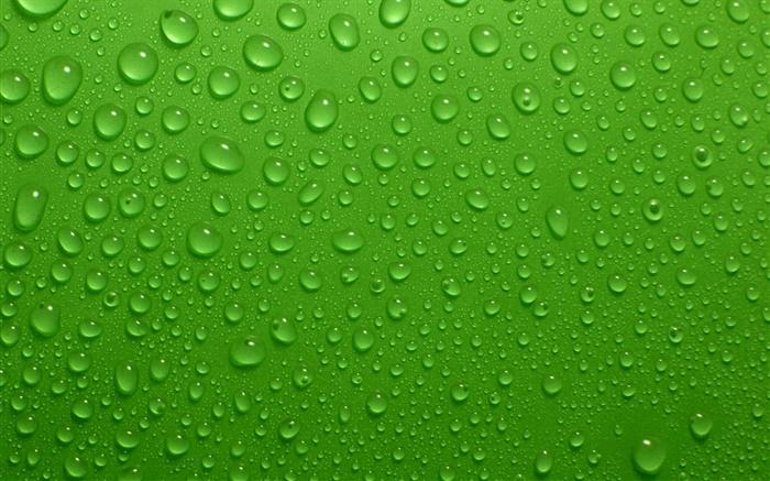 Fondos De Color Verde Agua: Las Gotas De Agua, Fondo Verde HD Fondos De Pantalla