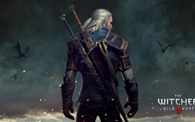 The Witcher 3: Wild Hunt HD fondos de pantalla